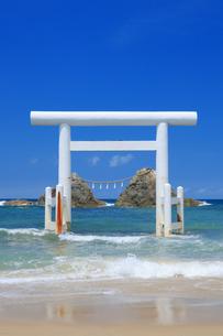桜井二見ヶ浦の鳥居と夫婦岩の写真素材 [FYI04743118]