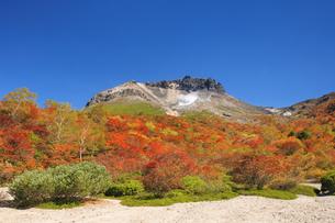 紅葉の姥ヶ平より望む那須岳の写真素材 [FYI04743124]