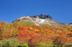 紅葉の姥ヶ平より望む那須岳の写真素材 [FYI04743125]