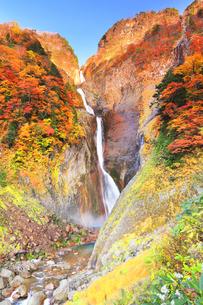 秋の立山 称名滝と紅葉の写真素材 [FYI04743161]