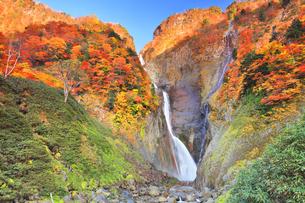 秋の立山 称名滝と紅葉の写真素材 [FYI04743162]