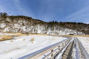 雪解けが進む湯ノ平湿原に架かる木道の写真素材 [FYI04743249]