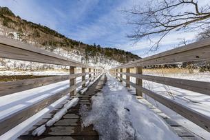 雪解けが進む湯ノ平湿原に架かる木道の写真素材 [FYI04743256]