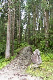 中山道 鳥居峠の石畳の写真素材 [FYI04743403]