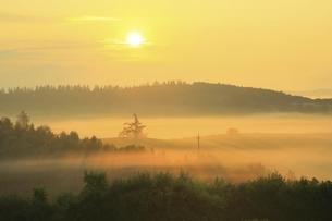新栄の丘 朝霧と太陽の写真素材 [FYI04743469]