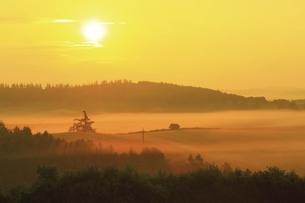 新栄の丘 朝霧と太陽の写真素材 [FYI04743471]