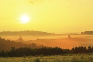 新栄の丘 朝霧と太陽の写真素材 [FYI04743473]