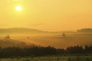 新栄の丘 朝霧と太陽の写真素材 [FYI04743475]