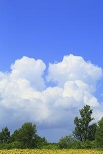 入道雲の写真素材 [FYI04743492]