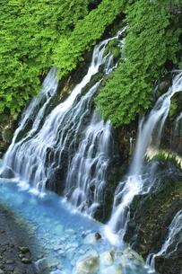 しらひげの滝の写真素材 [FYI04743514]