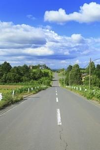 ジエットコースターの路の写真素材 [FYI04743572]