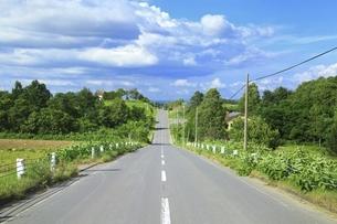 ジエットコースターの路の写真素材 [FYI04743574]