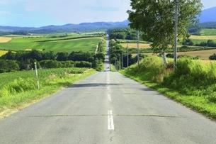 ジエットコースターの路の写真素材 [FYI04743584]