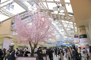 上野駅構内の写真素材 [FYI04743842]