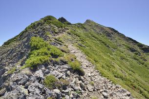 ニペソツ山の頂上(北海道・ニペソツ山)の写真素材 [FYI04744083]