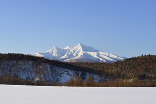 冬の斜里岳(北海道・斜里町)の写真素材 [FYI04744096]