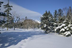 冬の斜里岳(北海道・斜里町)の写真素材 [FYI04744097]