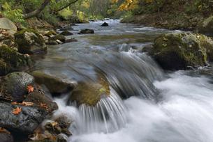 秋の渓流(北海道・鹿追町)の写真素材 [FYI04744102]