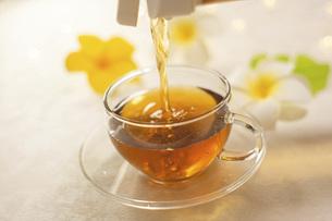 家でお茶を飲む様子。おうち時間、休憩時間。の写真素材 [FYI04744119]