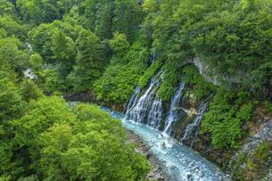 美瑛町 白ひげの滝の写真素材 [FYI04744144]