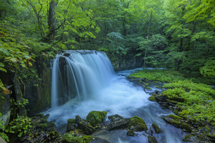 奥入瀬渓流の銚子大滝の写真素材 [FYI04744154]