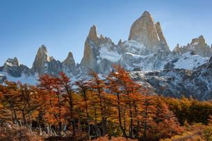 パタゴニアの紅葉と名峰フィッツロイの写真素材 [FYI04744237]