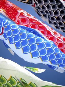 鯉のぼりの写真素材 [FYI04744270]