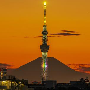 東京スカイツリーライトアップと富士山の写真素材 [FYI04744289]