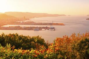 【香川県】屋島の山頂からみる高松市街の様子 夕方の写真素材 [FYI04744370]