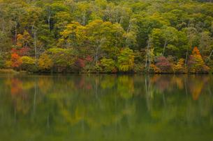 秋の丸池の写真素材 [FYI04744840]