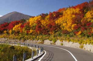 吾妻小富士の紅葉の写真素材 [FYI04744851]