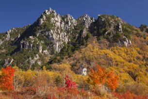 瑞牆山とカラマツ黄葉の写真素材 [FYI04744865]