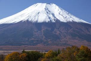 新雪の富士山の写真素材 [FYI04744873]