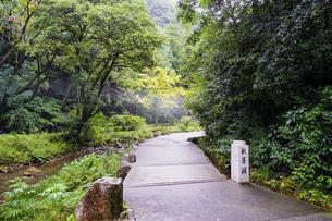 秋芳洞入口の石標の写真素材 [FYI04744948]