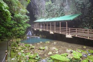 秋芳洞入口の木橋の写真素材 [FYI04744949]