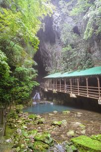 秋芳洞入口の木橋の写真素材 [FYI04744950]