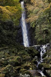 養老の滝と紅葉の写真素材 [FYI04745028]