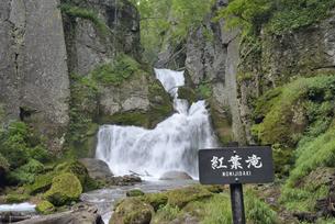 夏の紅葉滝(北海道・層雲峡)の写真素材 [FYI04745073]