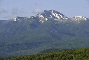 三国峠から見たニペソツ山(北海道・上士幌町)の写真素材 [FYI04745091]