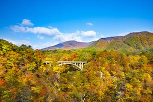 秋の鳴子峡の写真素材 [FYI04745112]