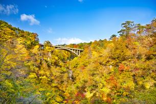 秋の鳴子峡の写真素材 [FYI04745116]