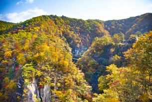 秋の鳴子峡の写真素材 [FYI04745124]