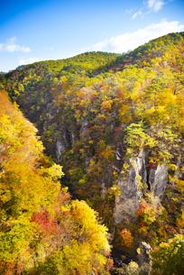 秋の鳴子峡の写真素材 [FYI04745141]