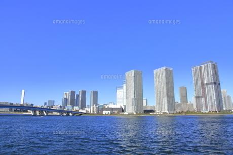 豊洲公園から見た湾岸エリアの高層マンション群の写真素材 [FYI04745401]