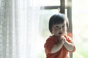 窓際で笑う幼児の写真素材 [FYI04745925]