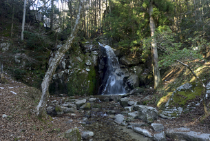 寿老の滝の写真素材 [FYI04746054]