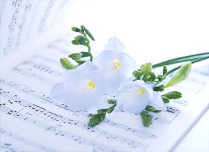楽譜と花の写真素材 [FYI04746090]