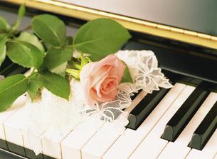 ピアノとバラの写真素材 [FYI04746092]