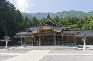 弥彦神社 本殿 拝殿の写真素材 [FYI04746314]