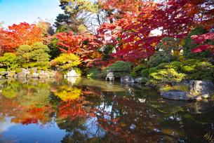 秋のもみじ公園の写真素材 [FYI04746365]